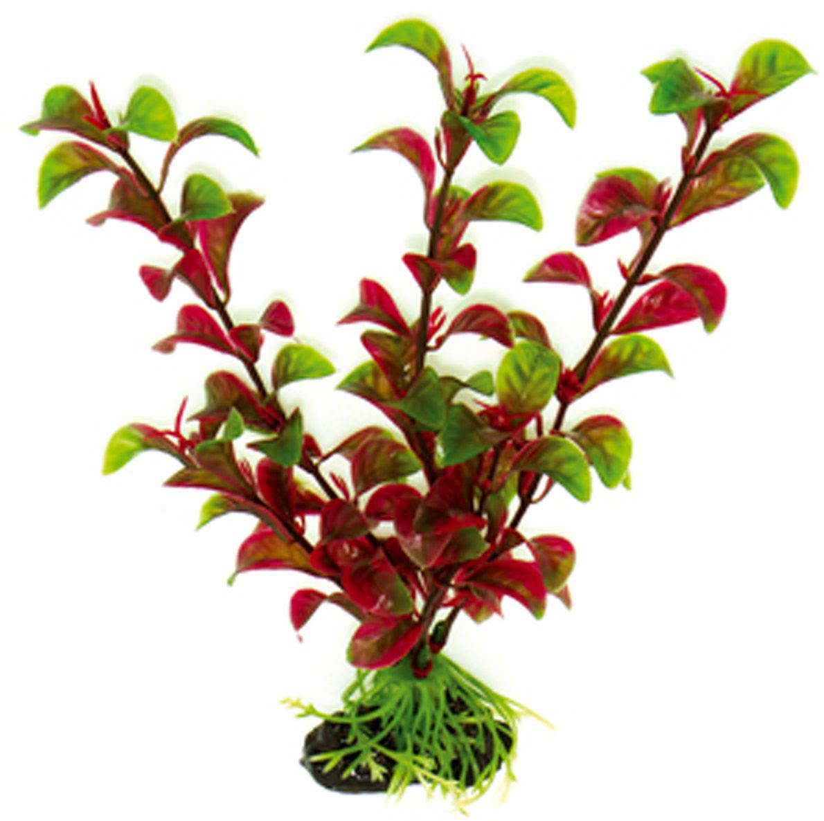 Искусственное растение Dezzie, 20 см. 56020385602038Подводные растения являются неотъемлемой частью композиции аквариума, радуют глаз, а также могут быть уютным убежищем для рыб и других обитателей аквариума. Пластиковые растения имеют устойчивое дно, которое не нуждается в дополнительном утяжелении и легко устанавливается в грунт. Они очень практичны в использовании, имеют стойкую к воздействию воды окраску и не требуют обременительного ухода. Их можно легко достать и протереть тряпкой во время уборки аквариума. Растения из пластика создадут неповторимый дизайн пресноводного или морского аквариума.