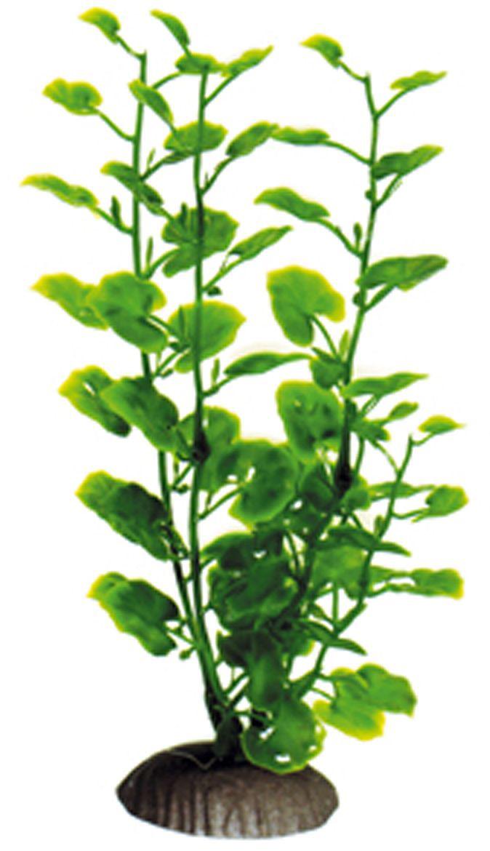 Искусственное растение Dezzie, 20 см. 56020405602040Подводные растения являются неотъемлемой частью композиции аквариума, радуют глаз, а также могут быть уютным убежищем для рыб и других обитателей аквариума. Пластиковые растения имеют устойчивое дно, которое не нуждается в дополнительном утяжелении и легко устанавливается в грунт. Они очень практичны в использовании, имеют стойкую к воздействию воды окраску и не требуют обременительного ухода. Их можно легко достать и протереть тряпкой во время уборки аквариума. Растения из пластика создадут неповторимый дизайн пресноводного или морского аквариума.