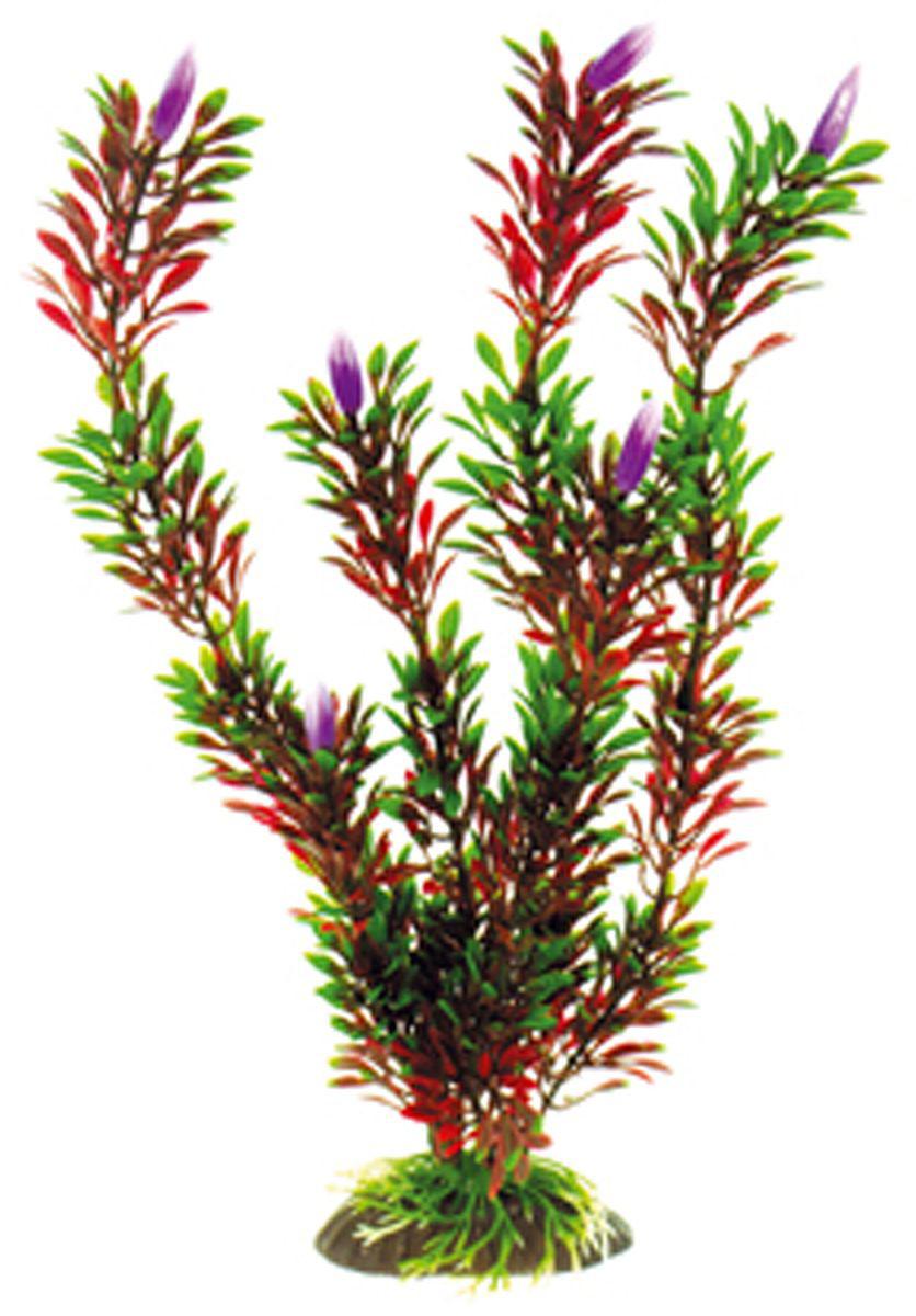 Искусственное растение Dezzie, 30 см. 56020655602065Подводные растения являются неотъемлемой частью композиции аквариума, радуют глаз, а также могут быть уютным убежищем для рыб и других обитателей аквариума. Пластиковые растения имеют устойчивое дно, которое не нуждается в дополнительном утяжелении и легко устанавливается в грунт. Они очень практичны в использовании, имеют стойкую к воздействию воды окраску и не требуют обременительного ухода. Их можно легко достать и протереть тряпкой во время уборки аквариума. Растения из пластика создадут неповторимый дизайн пресноводного или морского аквариума.