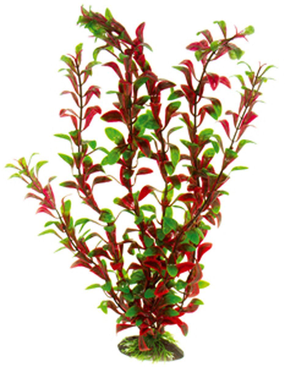 Искусственное растение для аквариума Dezzie, 40 см. 56020815602081Подводное искусственное растение для аквариума Dezzie является неотъемлемой частью композиции аквариума, радует глаз, а также может быть уютным убежищем для рыб и других обитателей аквариума. Пластиковое растение имеет устойчивое дно, которое не нуждается в дополнительном утяжелении и легко устанавливается в грунт. Растение очень практично в использовании, имеет стойкую к воздействию воды окраску и не требует обременительного ухода. Его можно легко достать и протереть тряпкой во время уборки аквариума. Растения из пластика создадут неповторимый дизайн пресноводного или морского аквариума. Высота растения: 40 см.