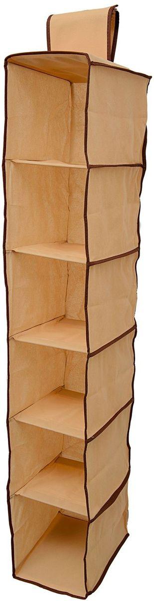 Органайзер Homsu Costa-Rica, подвесной в шкаф, 120х22х31 см, цвет: коричневыйHOM-755Подвесной органайзер имеет 6 раздельных ячеек размером 30Х20см, очень удобен для хранения вещей в вашем шкафу. Идеально для колготок, шапок, шарфов, мелочей и других вещей ежедневного пользования. Размер изделия: 22х31х120см.