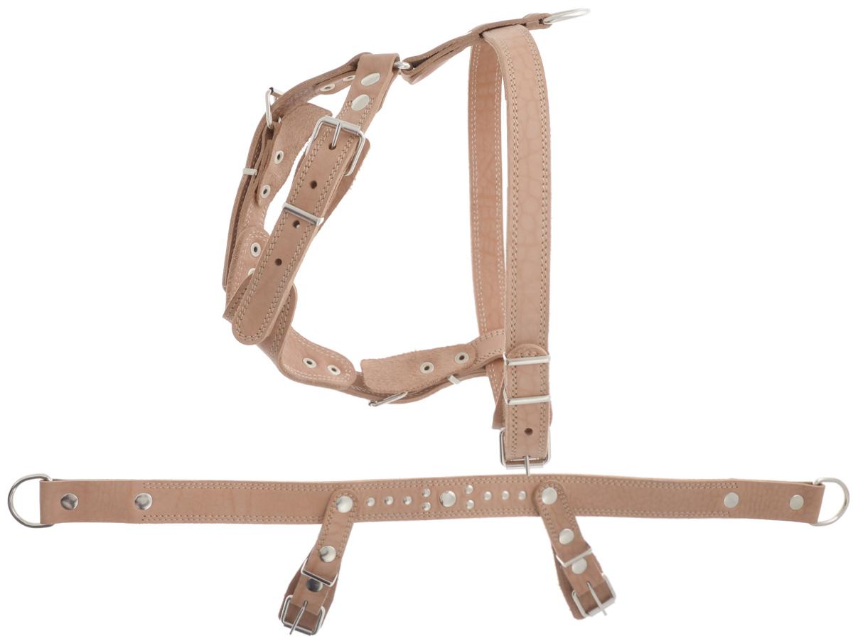 Шлейка для собак Аркон Стандарт №1, универсальная, цвет: бежевый, обхват груди 70-87 смш1уУниверсальная шлейка Аркон Стандарт №1 выполнена из искусственной кожи. Данная модель может использоваться как для прогулки, так и для на ездового спорта. Она состоит 3 частей: к основной части крепятся элементы для прогулочной и ездовой шлейки. Крепкие металлические крепежи делают ее надежной и долговечной. Имеется металлическое полукольцо для крепления поводка, а также тяговые полукольца для санок. Шлейка отличается высоким качеством, удобством и универсальностью. Размер регулируется при помощи пряжки, зафиксированной в одном из отверстий. Правильно подобранная шлейка не стесняет движения собаки, не натирает кожу, поэтому животное чувствует себя в ней уверенно и комфортно. Обхват груди: 70-87 см. Ширина строп: 3,5 см; 2,5 см.