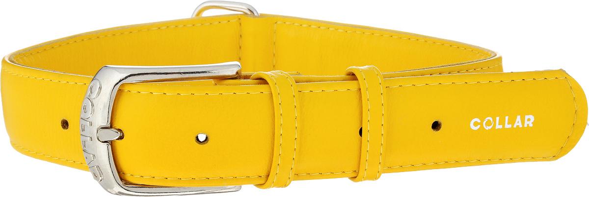 Ошейник для собак CoLLaR Glamour, цвет: желтый, ширина 3,5 см, обхват шеи 46-60 см. 3458834588Ошейник CoLLaR Glamour изготовлен из натуральной кожи, устойчивой к влажности и перепадам температур. Изделие декорировано объемной надписью Collar. Клеевой слой, сверхпрочные нити, крепкие металлические элементы делают ошейник надежным и долговечным. Размер ошейника регулируется при помощи металлической пряжки. Имеется металлическое кольцо для крепления поводка. Ваша собака тоже хочет выглядеть стильно! Такой модный ошейник станет для питомца отличным украшением и выделит его среди остальных животных. Изделие отличается высоким качеством, удобством и универсальностью. Обхват шеи: 46-60 см. Ширина: 3,5 см.