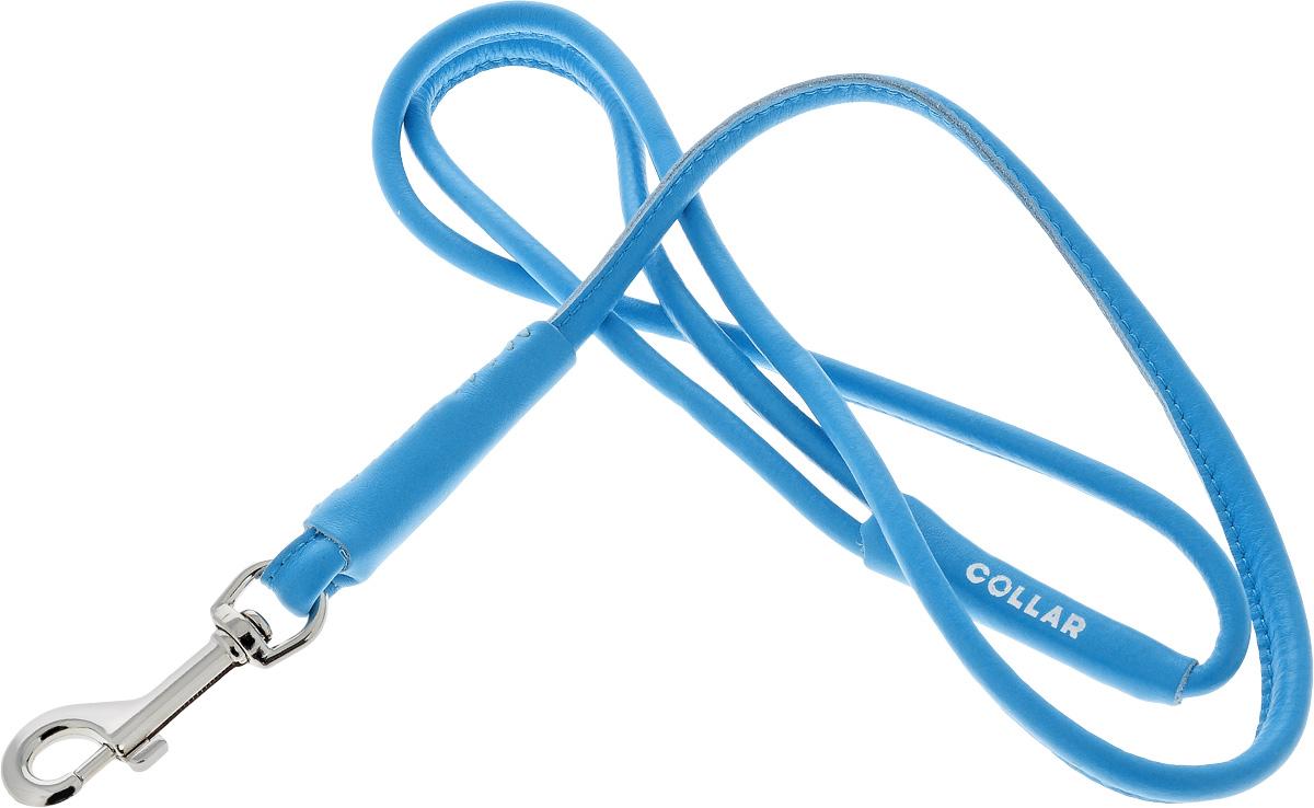 Поводок для собак CoLLaR Glamour, цвет: голубой, диаметр 8 мм, длина 1,22 м33772Поводок для собак CoLLaR Glamour изготовлен из натуральной кожи и снабжен металлическим карабином. Поводок отличается не только исключительной надежностью и удобством, но и ярким дизайном. Он идеально подойдет для активных собак, для прогулок на природе и охоты. Поводок - необходимый аксессуар для собаки. Ведь в опасных ситуациях именно он способен спасти жизнь вашему любимому питомцу. Длина поводка: 1,22 м. Диаметр поводка: 8 мм.