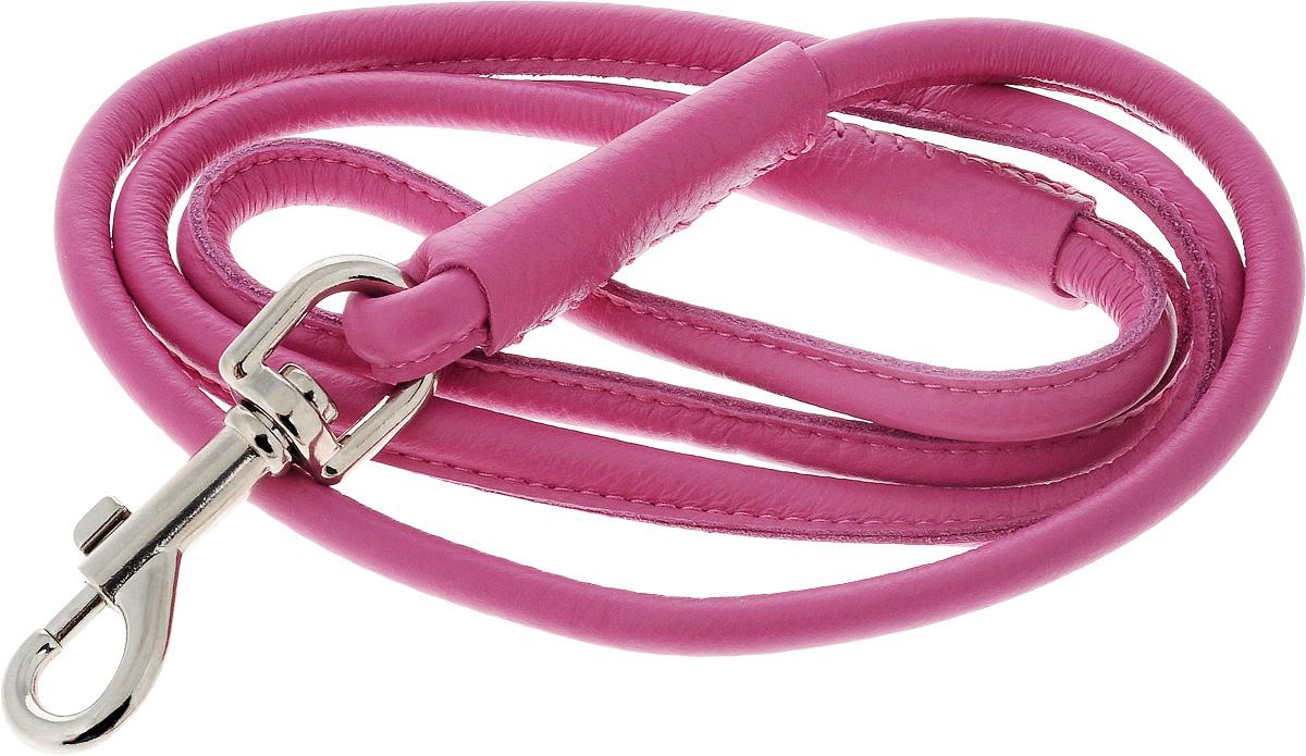 Поводок для собак CoLLaR Glamour, цвет: розовый, диаметр 1 см, длина 1,22 м33787Поводок для собак CoLLaR Glamour изготовлен из натуральной кожи и снабжен металлическим карабином. Поводок отличается не только исключительной надежностью и удобством, но и ярким дизайном. Он идеально подойдет для активных собак, для прогулок на природе и охоты. Поводок - необходимый аксессуар для собаки. Ведь в опасных ситуациях именно он способен спасти жизнь вашему любимому питомцу. Длина поводка: 1,22 м. Диаметр поводка: 1 см.