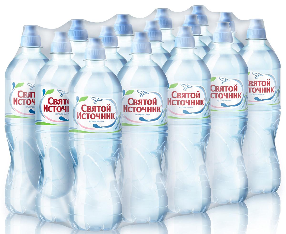 Святой Источник вода природная питьевая негазированная, 15 штук по 0,75 л