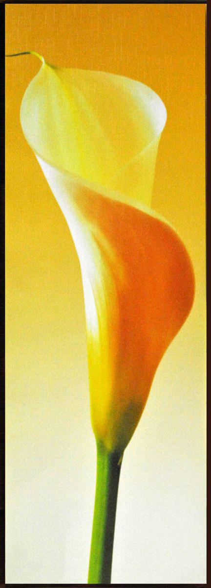 Декобокс СолоДомДекор Калла на желтом 1, 25х70 см2000191902549