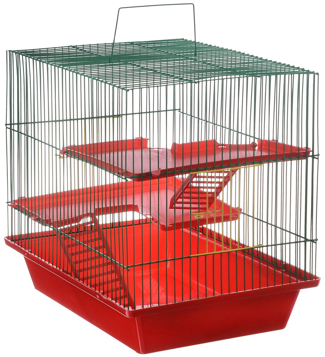 Клетка для грызунов ЗооМарк Гризли, 3-этажная, цвет: красный поддон, зеленая решетка, красные этажи, 41 х 30 х 36 см230КЗКлетка ЗооМарк Гризли, выполненная из полипропилена и металла, подходит для мелких грызунов. Изделие трехэтажное. Клетка имеет яркий поддон, удобна в использовании и легко чистится. Сверху имеется ручка для переноски. Такая клетка станет уединенным личным пространством и уютным домиком для маленького грызуна.