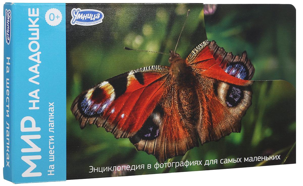 Умница Обучающие карточки На шести лапках2014_дизайн2Обучающие карточки Умница На шести лапках - это 24 карточки с яркими фотографиями насекомых. Карточки большого размера, удобно помещаются в детской ладошке. С ними можно играть в любом месте и в любое время. На обороте карточек собраны самые удивительные факты о разнообразных насекомых. На каждой карточке - игра, творческое задание или загадка! В комплект входит карточка для родителей с методическими рекомендациями и правилами игры. Игры серии Мир на ладошке развивают образное мышление, воображение, крупную и мелкую моторику. Малыш учится наблюдать, описывать и классифицировать объекты живой и неживой природы.