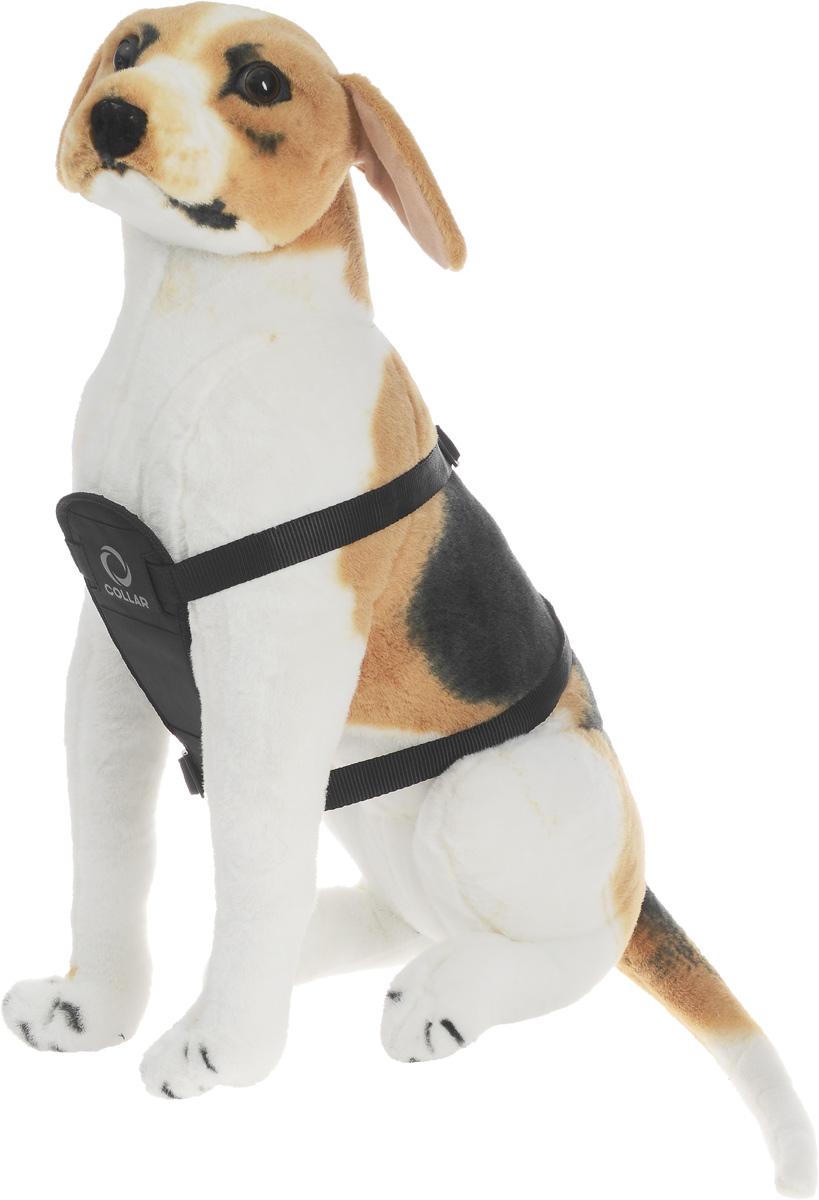 Шлейка для собак DOGextreme Comfort, цвет: черный, ширина 2,5 cм, обхват груди 60-90 см0709Шлейка для собак DOGextreme Comfort изготовлена из износостойкого быстросохнущего нейлона. Изделие предназначено для профессиональной дрессировки и путешествий. Ремешки регулируемой длины способствуют плотному прилеганию к телу животного. Имеется металлическое полукольцо для крепления поводка. Шлейка - это альтернатива ошейнику. Правильно подобранная шлейка не стесняет движения питомца, не натирает кожу, поэтому животное чувствует себя в ней уверенно и комфортно. Изделие отличается высоким качеством, удобством и универсальностью. Обхват шеи: 48-77 см. Обхват груди: 60-90 см. Ширина ремней: 2,5 см.