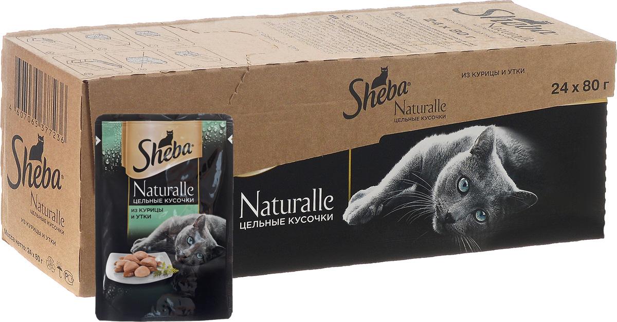 Корм консервированный Sheba Naturalle, для взрослых кошек, с курицей и уткой, 80 г, 24 шт42058Полнорационный сбалансированный корм для взрослых кошек Sheba Naturalle идеально подойдет вашему любимцу. Аппетитные мясные кусочки в нежном желе содержат все питательные вещества, витамины и минералы, необходимые для сбалансированного питания вашей кошки каждый день. Это изысканное блюдо - яркий пример того, как простые ингредиенты в руках истинного кулинара превращаются в удивительно вкусное блюдо. Сочные, тающие во рту кусочки курицы и утки рождают нежный вкус, который подарит настоящее удовольствие вашей кошке. Товар сертифицирован.