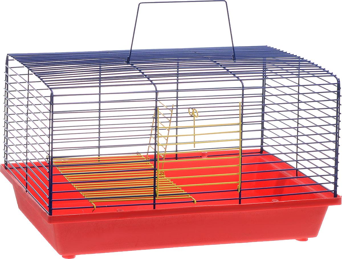 Клетка для хомяка ЗооМарк, 2-этажная, цвет: красный поддон, синяя решетка, 36 х 23 х 20 см111КСДвухэтажная клетка ЗооМарк, выполненная из полипропилена и металла, подходит для хомяков или других небольших грызунов. Она имеет яркий поддон, удобна в использовании и легко чистится. Такая клетка станет уединенным личным пространством и уютным домиком для маленького грызуна.