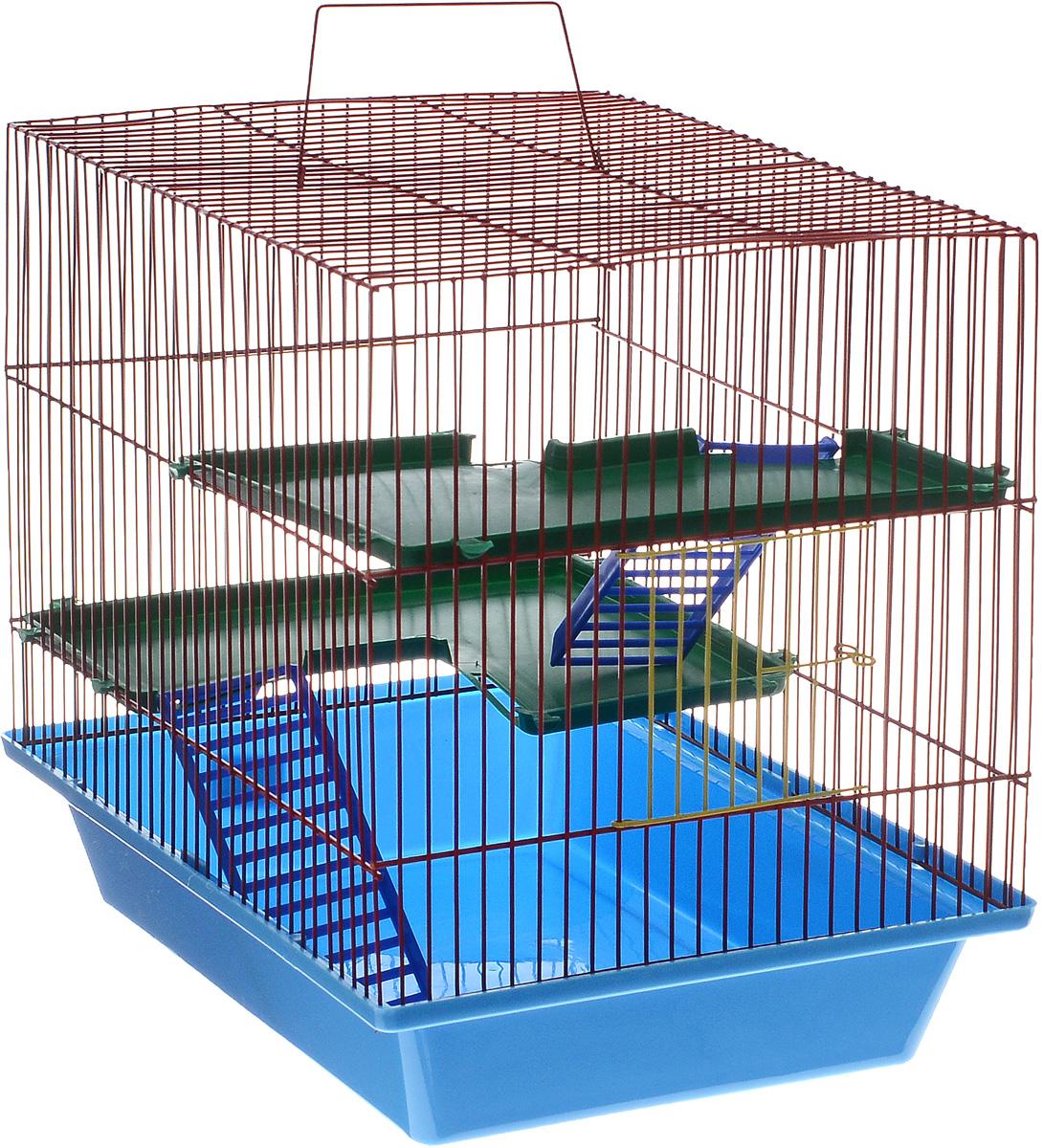 Клетка для грызунов ЗооМарк Гризли, 3-этажная, цвет: синий поддон, красная решетка, зеленые этажи, 41 х 30 х 36 см230СККлетка ЗооМарк Гризли, выполненная из полипропилена и металла, подходит для мелких грызунов. Изделие трехэтажное. Клетка имеет яркий поддон, удобна в использовании и легко чистится. Сверху имеется ручка для переноски. Такая клетка станет уединенным личным пространством и уютным домиком для маленького грызуна.