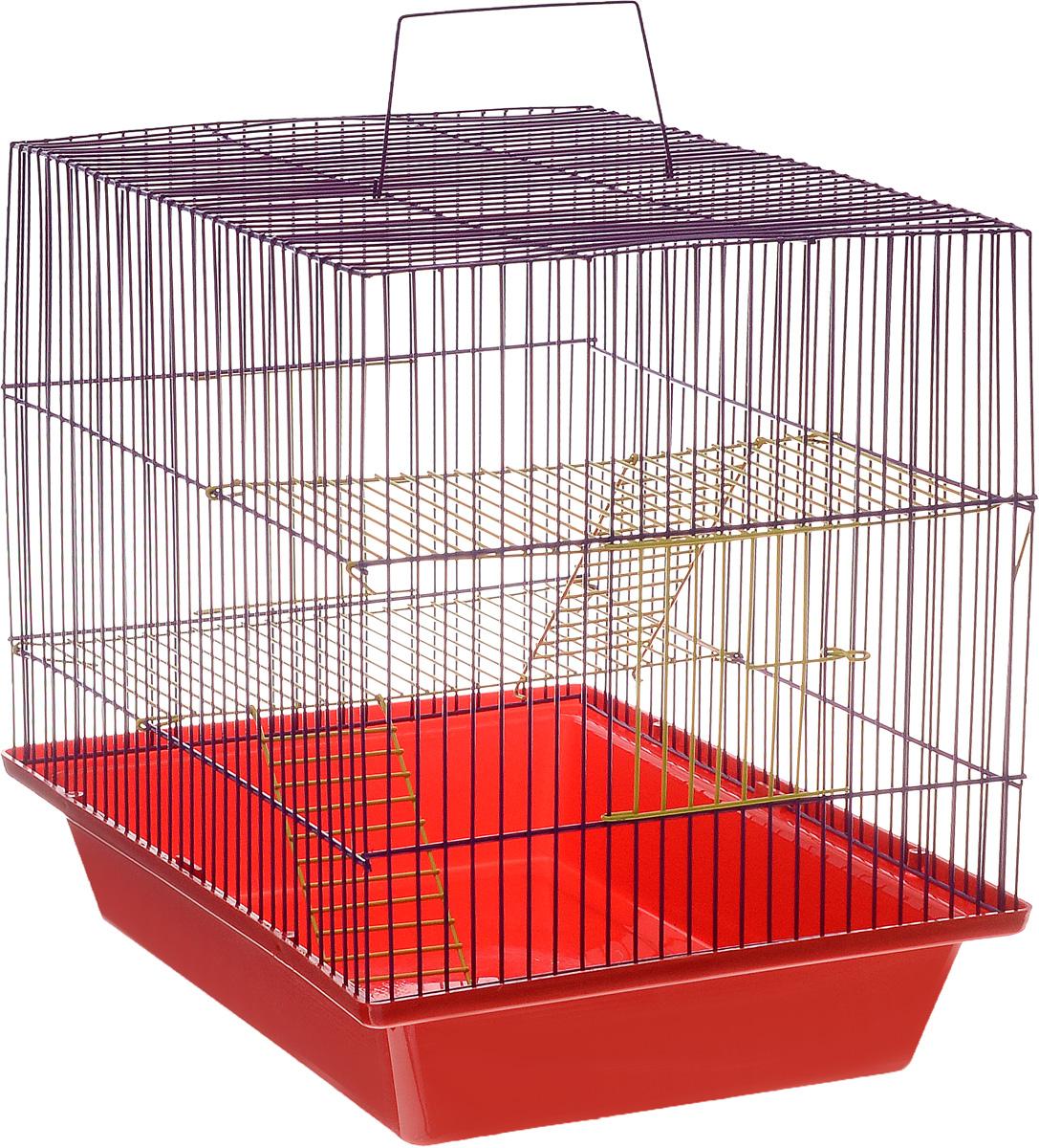 Клетка для грызунов ЗооМарк Гризли, 3-этажная, цвет: красный поддон, фиолетовая решетка, желтые этажи, 41 х 30 х 36 см230жКФКлетка ЗооМарк Гризли, выполненная из полипропилена и металла, подходит для мелких грызунов. Изделие трехэтажное. Клетка имеет яркий поддон, удобна в использовании и легко чистится. Сверху имеется ручка для переноски. Такая клетка станет уединенным личным пространством и уютным домиком для маленького грызуна.