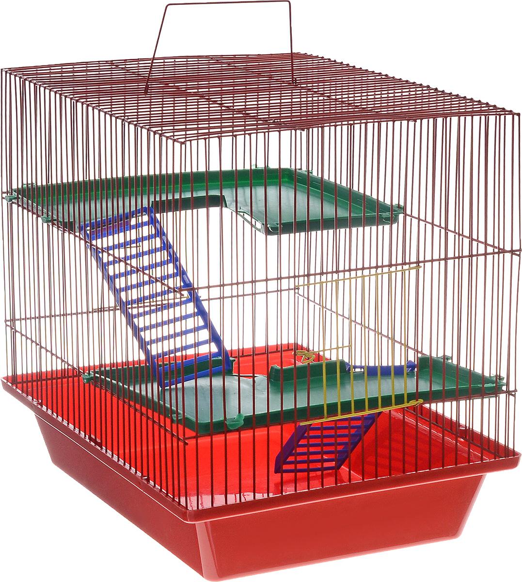Клетка для грызунов ЗооМарк Гризли, 3-этажная, цвет: красный поддон, красная решетка, зеленые этажи, 41 х 30 х 36 см230КККлетка ЗооМарк Гризли, выполненная из полипропилена и металла, подходит для мелких грызунов. Изделие трехэтажное. Клетка имеет яркий поддон, удобна в использовании и легко чистится. Сверху имеется ручка для переноски. Такая клетка станет уединенным личным пространством и уютным домиком для маленького грызуна.