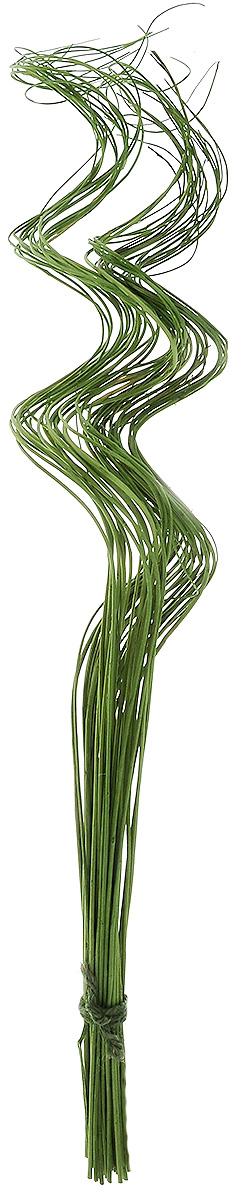Украшение декоративное Lovemark Пучок завиток Тинг-Тинг, цвет: зеленый, 40 шт6569_зеленыйУкрашение декоративное Пучок завиток Тинг-Тинг - великолепный подарок себе и вашим близким. Этот очаровательный предмет интерьера будет приковывать взгляды ваших гостей. Изделия из соломы несут в себе энергию солнечных лучей. Несмотря на свой хрупкий вид, cолома - прочный и долговечный материал, а значит не помнется и не поломается со временем. Рекомендации по уходу: изделие должно находиться в сухом помещении.