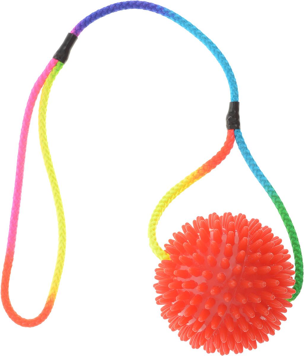 Игрушка для собак V.I.Pet Массажный мяч, на шнуре, цвет: красный, диаметр 9 см770950_красныйИгрушка для собак V.I.Pet Массажный мяч, изготовленная из пластика, предназначена для массажа и самомассажа рефлексогенных зон. Она имеет мягкие закругленные массажные шипы, эффективно массирующие и не травмирующие кожу. Сквозь мяч продет разноцветный шнур. Игрушка не позволит скучать вашему питомцу ни дома, ни на улице. Диаметр: 9 см. Длина шнура: 50 см.