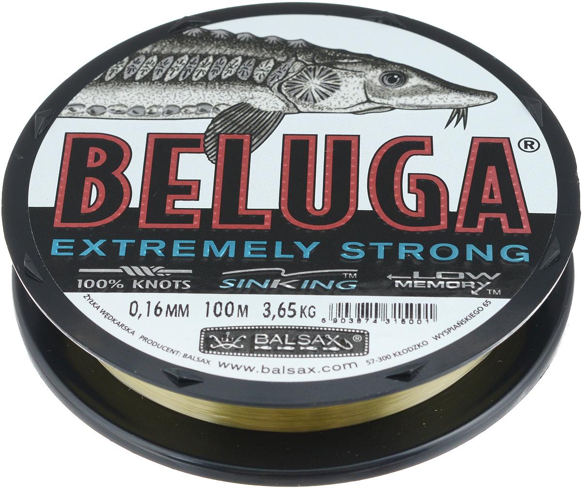 Леска Balsax Beluga, 100 м, 0,16 мм, 3,65 кг312-01016Леска Balsax Beluga изготовлена из 100% нейлона и идеально пригодна для ловли сильных хищников. Она имеет уменьшенную растяжимость и поэтому немедленно информирует о всех прикосновениях рыбы. Леска малочувствительна на повреждения и загрязнения. Благодаря своим свойствам делает возможным форсированную буксировку сильной рыбы. Великолепно пригодна для грунтовой ловли.
