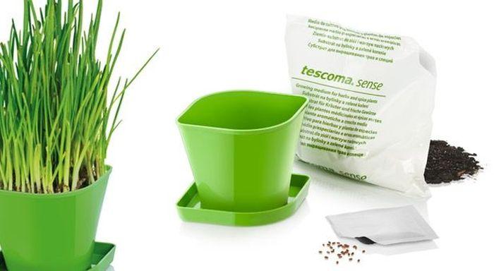 Набор для выращивания пряных растений Tescoma Sense. Зеленый Лук. 899062899062Идеально подходит для выращивания трав в домашних условиях. Комплект включает в себя семена, органический субстрат и горшок сделанный из прочного пластика. Инструкция по применению внутри пакета. Материал: пластик