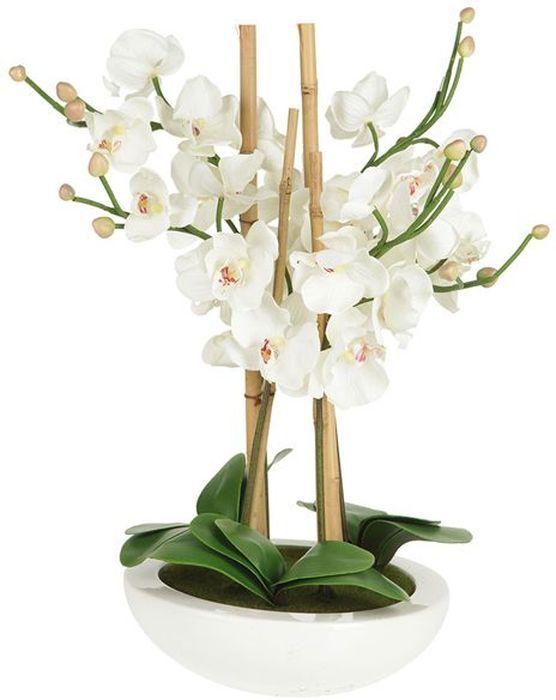 Декоративные цветы Dream Garden Орхидея белая, на подставке, 29х29х59см. DG-13062-ALDG-13062-ALДекор.цветы Орхидея белая на керам подставке 29х29х59см Торговая марка Dream Garden, Китай. Композиции из искусственных цветов долговечны, не требуют ежедневного ухода, выполнены из натуральных шелка и текстиля, прошедших специальную обработку высококачественными современными материалами. Искусственные цветы максимально приближены к натуральным, не пахнут, что исключает все аллергические реакции.