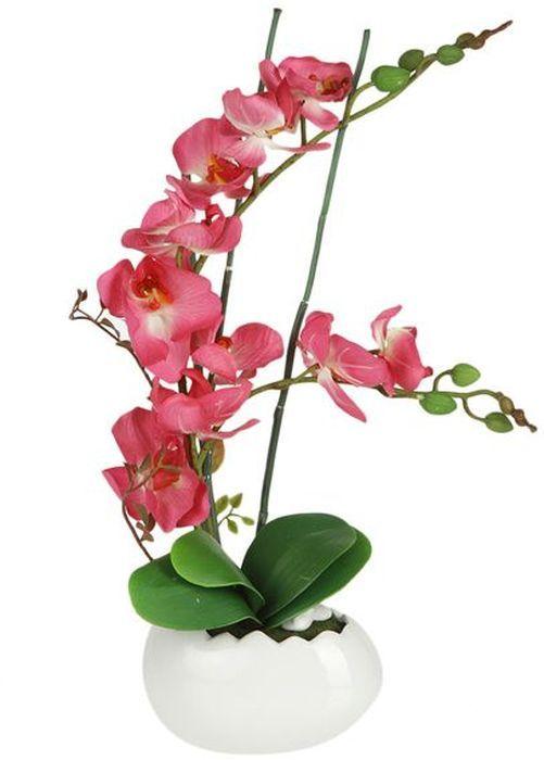 Цветы декоративные Dream Garden Орхидея, в вазе, 17 х 11,5 х 51,5 смDG-13066-FU-ALКомпозиции из искусственных цветов Dream Garden, выполненные из высококачественных материалов, долговечны и не требуют ежедневного ухода. Искусственные цветы максимально приближены к натуральным, не пахнут, что исключает все аллергические реакции.