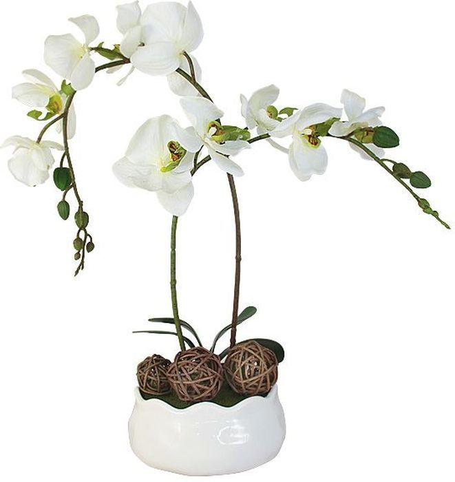 Декоративные цветы Dream Garden Орхидея белая, на подставке, 16х16х36см. DG-15009-FU-ALDG-15009-FU-ALДекор.цветы Орхидея белаяна керам подставке 16х16х36см Торговая марка Dream Garden, Китай. Композиции из искусственных цветов долговечны, не требуют ежедневного ухода, выполнены из натуральных шелка и текстиля, прошедших специальную обработку высококачественными современными материалами. Искусственные цветы максимально приближены к натуральным, не пахнут, что исключает все аллергические реакции.