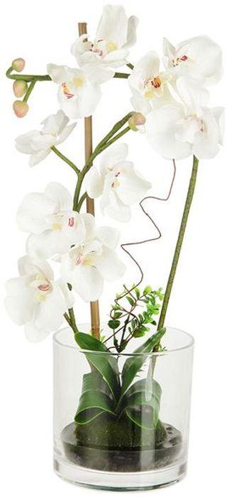 Декоративные цветы Dream Garden Орхидея белая, в вазе, 15х15х47,5см. DG-15015-ALDG-15015-ALДекор.цветы Орхидея белая в стекл.вазе15х15х47.5см Торговая марка Dream Garden, Китай. Композиции из искусственных цветов долговечны, не требуют ежедневного ухода, выполнены из натуральных шелка и текстиля, прошедших специальную обработку высококачественными современными материалами. Искусственные цветы максимально приближены к натуральным, не пахнут, что исключает все аллергические реакции.