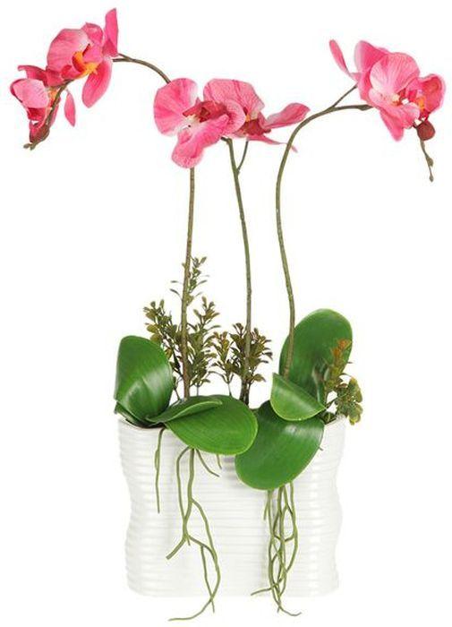 Декоративные цветы Dream Garden Орхидея тем розовая, в вазе, 19,5х7,5х51см. DG-15018-ALDG-15018-ALДекор.цветы Орхидея тем розоваяв керам.вазе 19.5х7.5х51см Торговая марка Dream Garden, Китай. Композиции из искусственных цветов долговечны, не требуют ежедневного ухода, выполнены из натуральных шелка и текстиля, прошедших специальную обработку высококачественными современными материалами. Искусственные цветы максимально приближены к натуральным, не пахнут, что исключает все аллергические реакции.