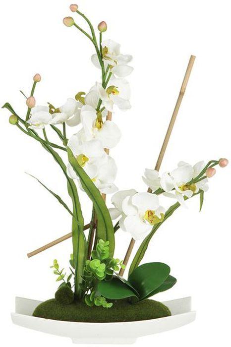 Декоративные цветы Dream Garden Орхидея белая, на подставке, 34,5х13х56см. DG-15025-ALDG-15025-ALДекор.цветы Орхидея белая на керам подставке 34.5х13х56см Торговая марка Dream Garden, Китай. Композиции из искусственных цветов долговечны, не требуют ежедневного ухода, выполнены из натуральных шелка и текстиля, прошедших специальную обработку высококачественными современными материалами. Искусственные цветы максимально приближены к натуральным, не пахнут, что исключает все аллергические реакции.
