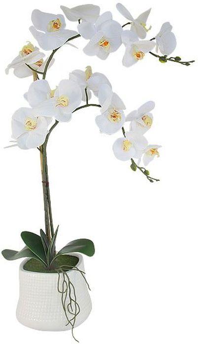 Декоративные цветы в вазе Dream Garden Орхидея белая, 38х16х68 смDG-15044N-ALТорговая марка Dream Garden, Китай. Композиции из искусственных цветов долговечны, не требуют ежедневного ухода, выполнены из натуральных шелка и текстиля, прошедших специальную обработку высококачественными современными материалами. Искусственные цветы максимально приближены к натуральным, не пахнут, что исключает все аллергические реакции.