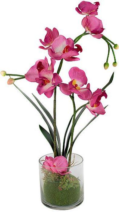Цветы декоративные Dream Garden Орхидея, в вазе, 34 х 12 х 50 смDG-16001-ALКомпозиции из искусственных цветов Dream Garden, выполненные из высококачественных материалов, долговечны и не требуют ежедневного ухода. Искусственные цветы максимально приближены к натуральным, не пахнут, что исключает все аллергические реакции.