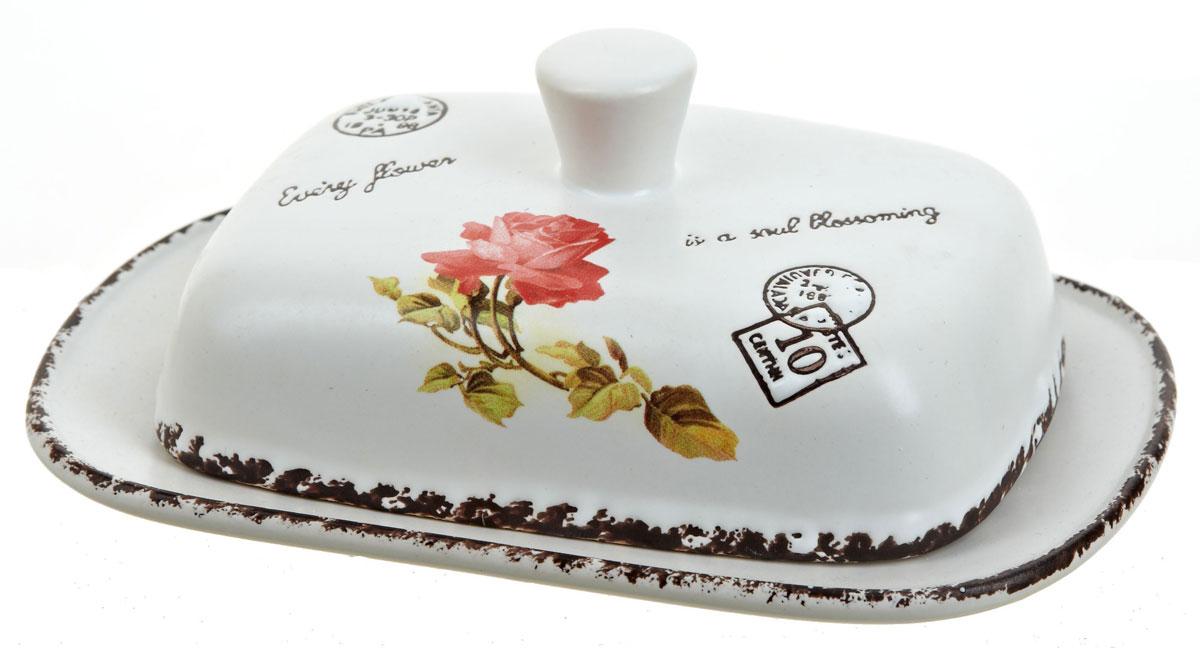Масленка ENS Group Flower, 19 х 12,5 х 7 см. 17500371750037Масленка Flower, изготовленная из керамики, предназначена для красивой сервировки и хранения масла. Она состоит из крышки с удобной ручкой и подноса. Масло в ней долго остается свежим, а при хранении в холодильнике не впитывает посторонние запахи. Гладкая поверхность обеспечивает легкую чистку.