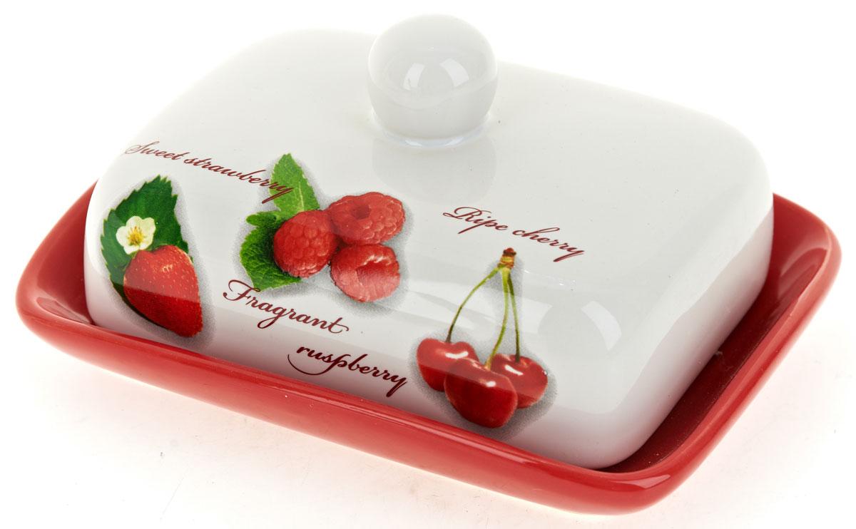 Масленка ENS Group Садовая ягода. L2520258L2520258Масленка Садовая ягода, изготовленная из керамики, предназначена для красивой сервировки и хранения масла. Она состоит из крышки с удобной ручкой и подноса. Масло в ней долго остается свежим, а при хранении в холодильнике не впитывает посторонние запахи. Гладкая поверхность обеспечивает легкую чистку.
