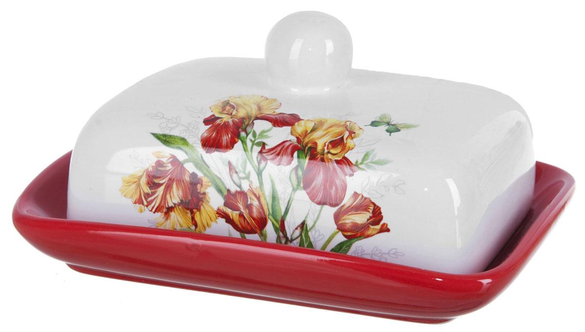 Масленка ENS Group Касатик. L2520650L2520650Масленка Касатик, изготовленная из керамики, предназначена для красивой сервировки и хранения масла. Она состоит из крышки с удобной ручкой и подноса. Масло в ней долго остается свежим, а при хранении в холодильнике не впитывает посторонние запахи. Гладкая поверхность обеспечивает легкую чистку.