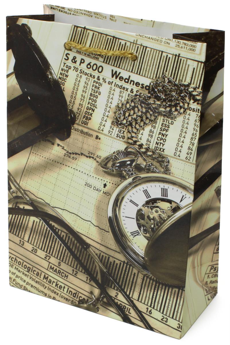 Пакет подарочный МегаМАГ Мужская тематика, 14 х 20 х 6,5 см. 686 MS686 MSПакет подарочный ламинированный. Ручки-шнурки. Размер:140*200*65 мм .