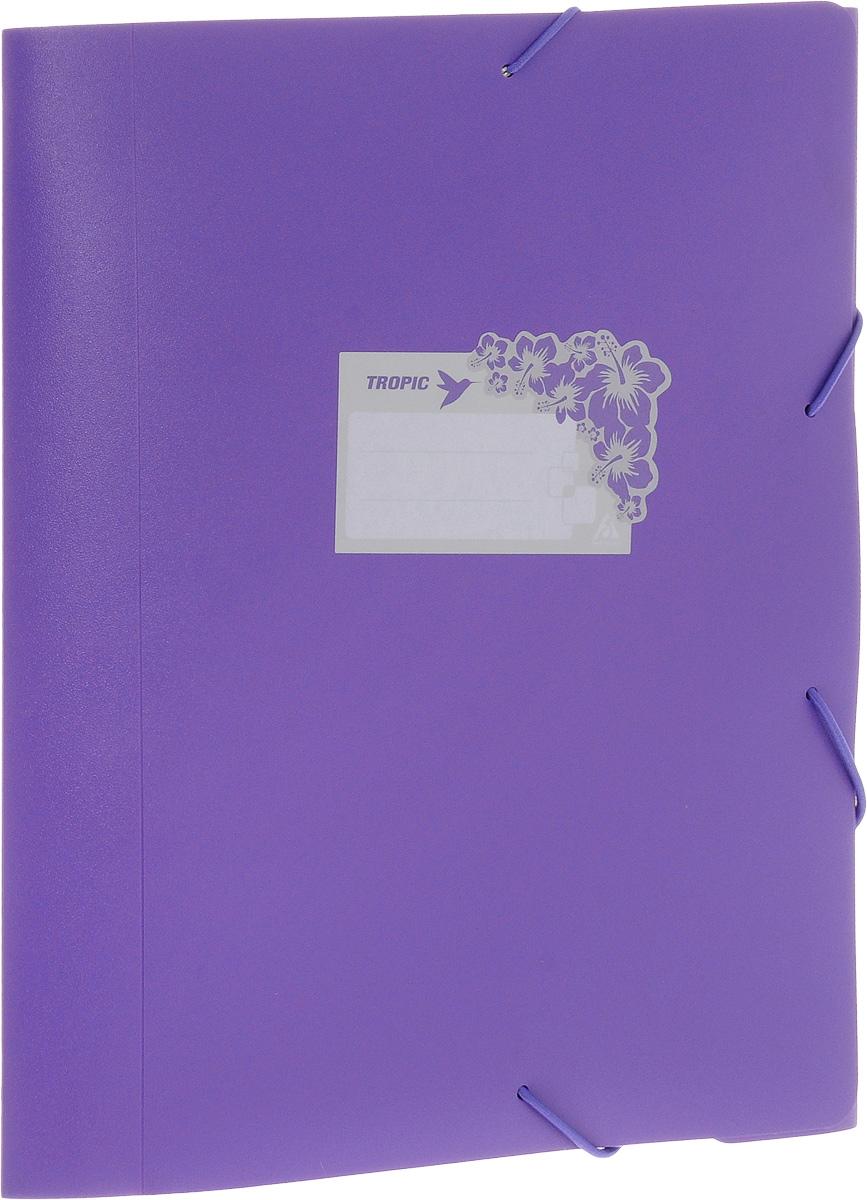 Бюрократ Папка-короб на резинке Tropic формат А4+ цвет фиолетовый816252__фиолетовыйПапка-короб на резинке Tropic - это удобный и функциональный офисный инструмент, предназначенный для хранения и транспортировки большого объема рабочих бумаг и документов формата А4+. На лицевой стороне папки имеется место для ФИО владельца, оформленное рисунком с тропическими цветами. Папка изготовлена из жесткого, но гибкого фактурного пластика и закрывается при помощи угловых резинок. Резинки не позволят папке раскрыться в неподходящий момент. Папка надежно сохранит ваши документы и сбережет их от повреждений, пыли и влаги.