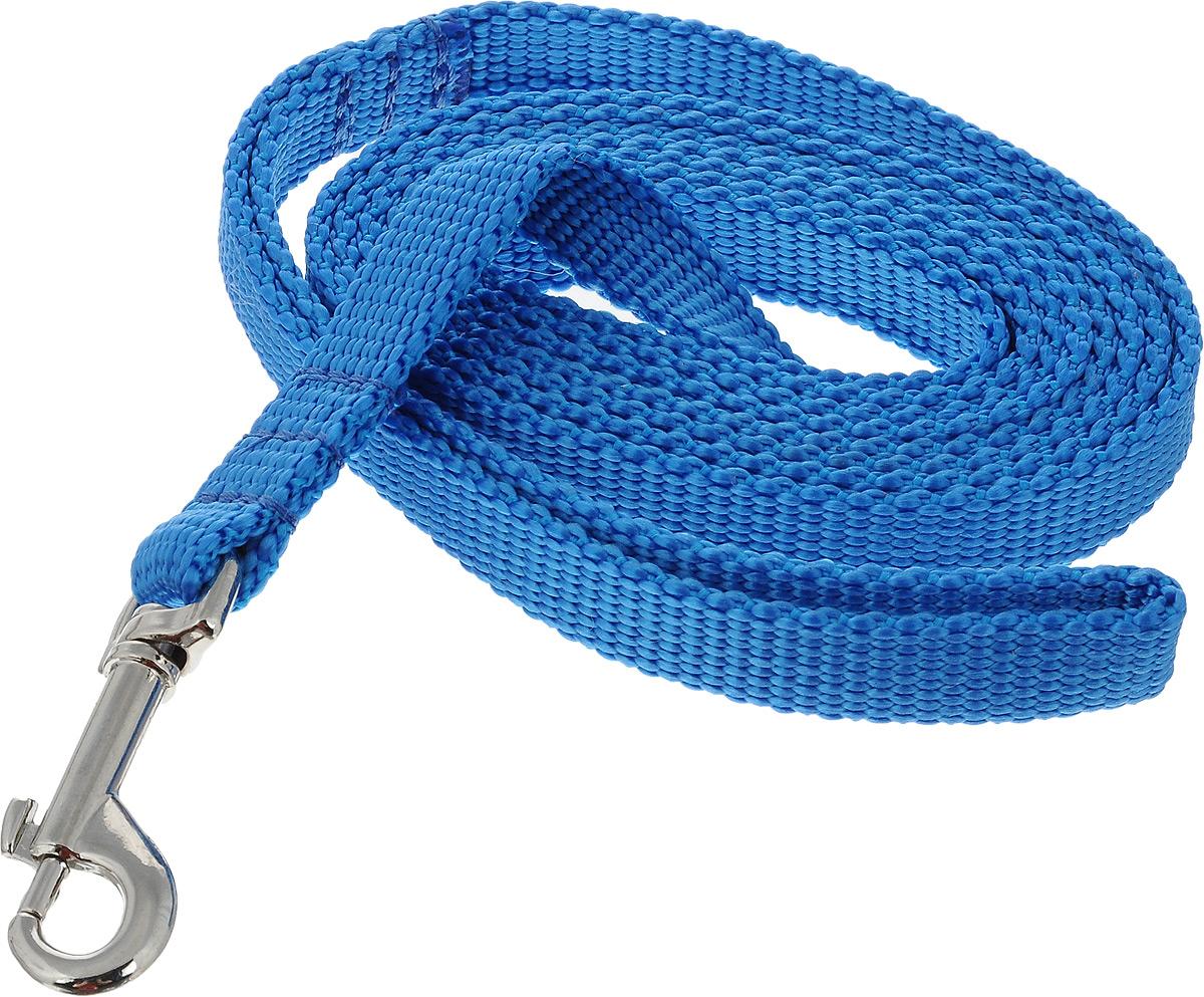 Поводок капроновый для собак Аркон, цвет: голубой, ширина 1,5 см, длина 2 мпк2м15_голубойПоводок для собак Аркон изготовлен из высококачественного цветного капрона и снабжен металлическим карабином. Изделие отличается не только исключительной надежностью и удобством, но и привлекательным современным дизайном. Поводок - необходимый аксессуар для собаки. Ведь в опасных ситуациях именно он способен спасти жизнь вашему любимому питомцу. Иногда нужно ограничивать свободу своего четвероногого друга, чтобы защитить его или себя от неприятностей на прогулке. Длина поводка: 2 м. Ширина поводка: 1,5 см.