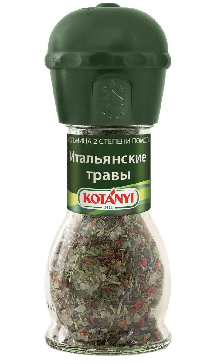 Kotanyi Итальянские травы, 48 г411711Насладитесь интенсивным ароматом трав! Добавляйте приправу в конце приготовления или в готовое блюдо. Внимание! Может содержать следы глютеносодержащих злаков, яиц, сои, сельдерея, кунжута, орехов, молока (лактозы), горчицы. Уважаемые клиенты! Обращаем ваше внимание, что полный перечень состава продукта представлен на дополнительном изображении.