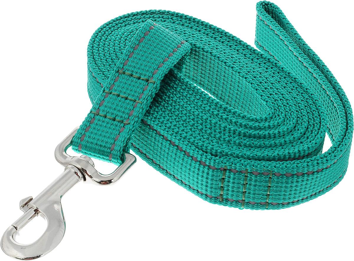 Поводок капроновый для собак Аркон, цвет: зеленый, ширина 2,5 см, длина 3 мпк3м25_зеленыйПоводок для собак Аркон изготовлен из высококачественного цветного капрона и снабжен металлическим карабином. Изделие отличается не только исключительной надежностью и удобством, но и привлекательным современным дизайном. Поводок - необходимый аксессуар для собаки. Ведь в опасных ситуациях именно он способен спасти жизнь вашему любимому питомцу. Иногда нужно ограничивать свободу своего четвероногого друга, чтобы защитить его или себя от неприятностей на прогулке. Длина поводка: 3 м. Ширина поводка: 2,5 см.