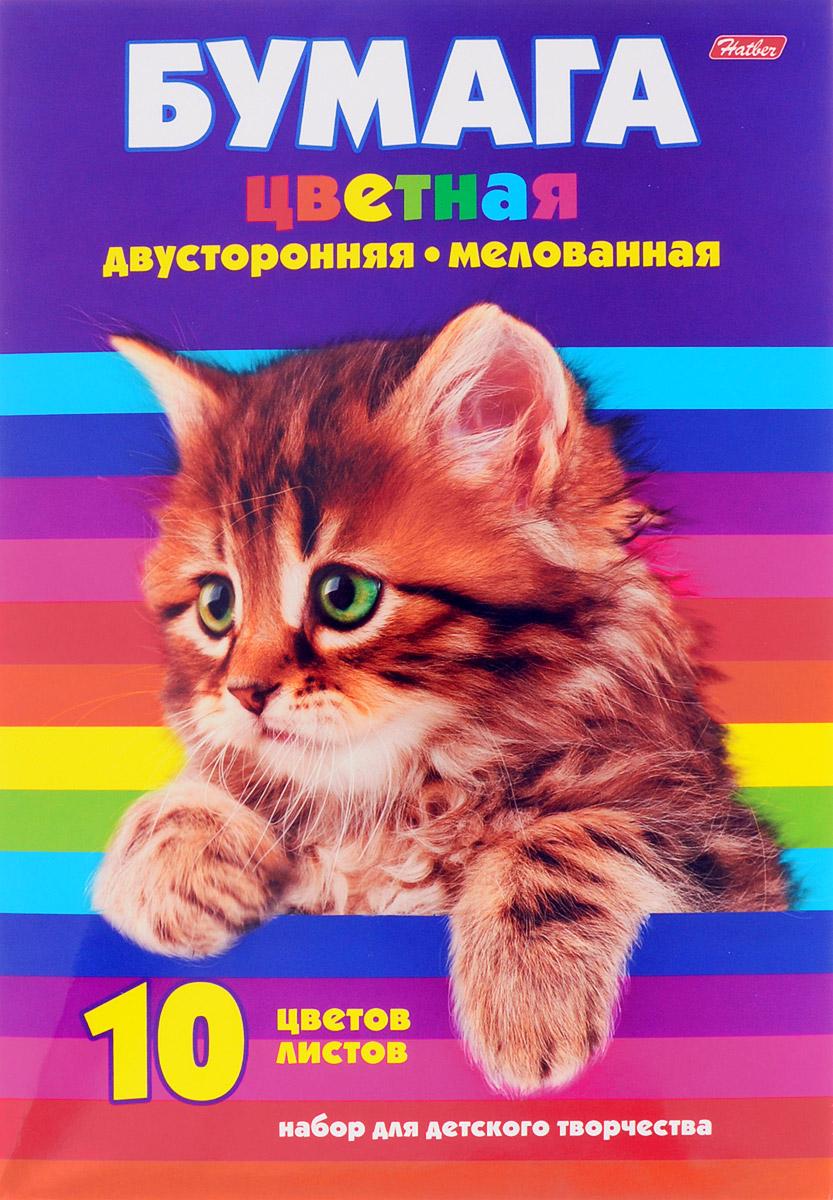 Hatber Набор цветной мелованной бумаги Котенок 10 листов 10Бц4м_09623