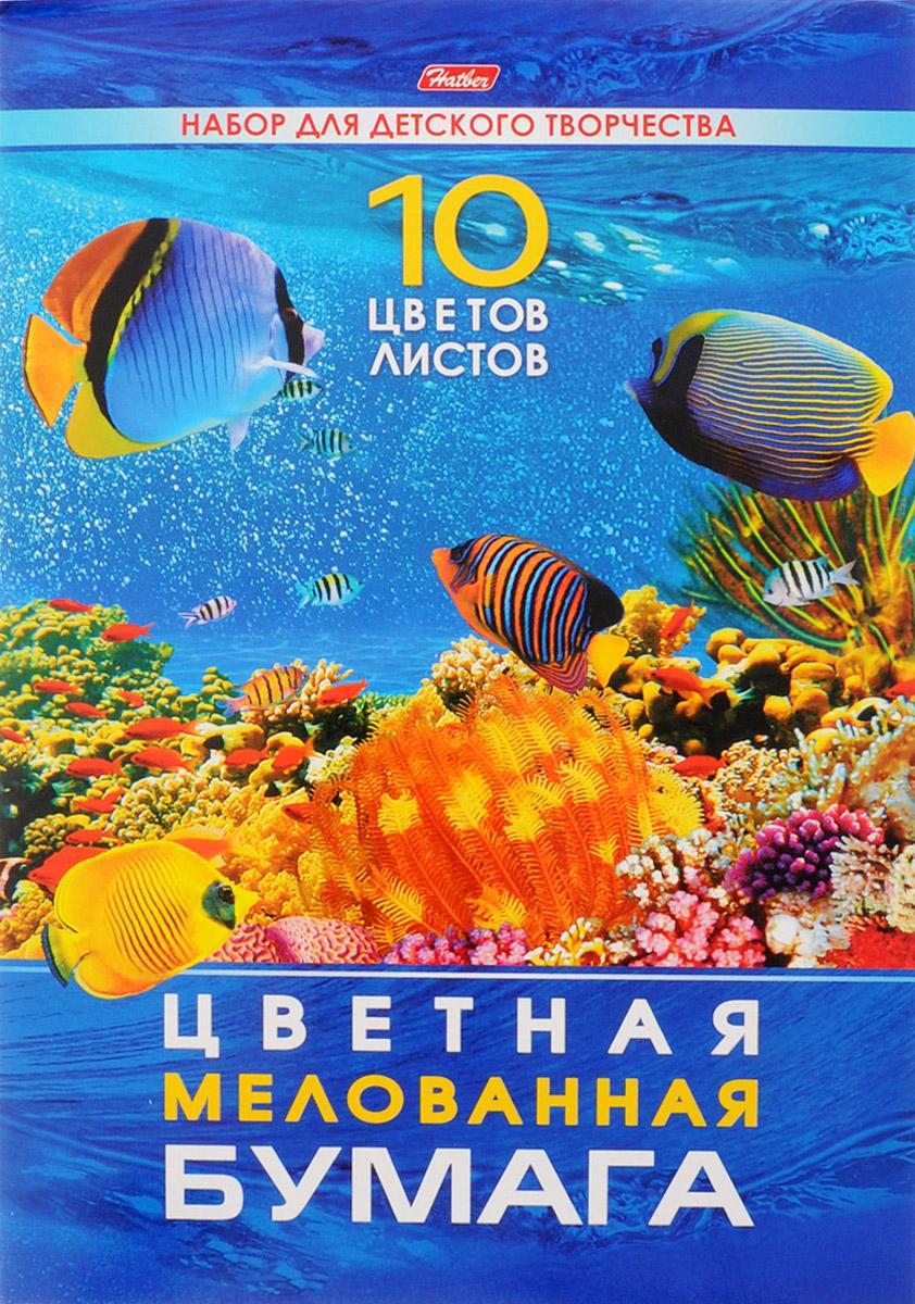 Hatber Набор цветной мелованной бумаги Подводный мир 10 листов