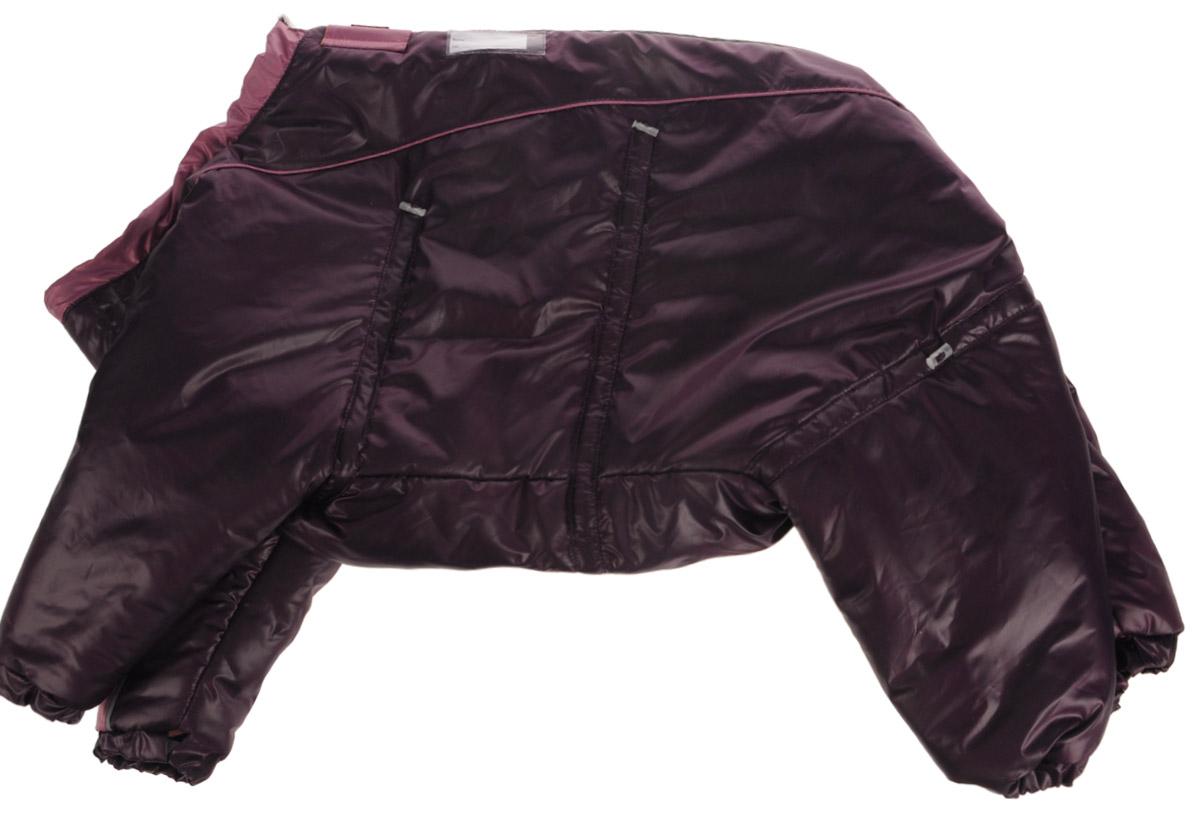 Комбинезон для собак Dogmoda Doggs, зимний, для девочки, цвет: фиолетовый. Размер XXLDM-140541_фиолетовыйКомбинезон для собак Dogmoda Doggs отлично подойдет для прогулок в зимнее время года. Комбинезон изготовлен из полиэстера, защищающего от ветра и снега, с утеплителем из синтепона, который сохранит тепло даже в сильные морозы, а на подкладке используется искусственный мех, который обеспечивает отличный воздухообмен. Комбинезон застегивается на молнию и липучку, благодаря чему его легко надевать и снимать. Молния снабжена светоотражающими элементами. Низ рукавов и брючин оснащен внутренними резинками, которые мягко обхватывают лапки, не позволяя просачиваться холодному воздуху. На вороте, пояснице и лапках комбинезон затягивается на шнурок-кулиску с затяжкой. Модель снабжена непромокаемым карманом для размещения записки с информацией о вашем питомце, на случай если он потеряется. Благодаря такому комбинезону простуда не грозит вашему питомцу и он не даст любимцу продрогнуть на прогулке. Длина по спинке: 54 см. Обхват шеи: 74 см. Обхват груди: 100...