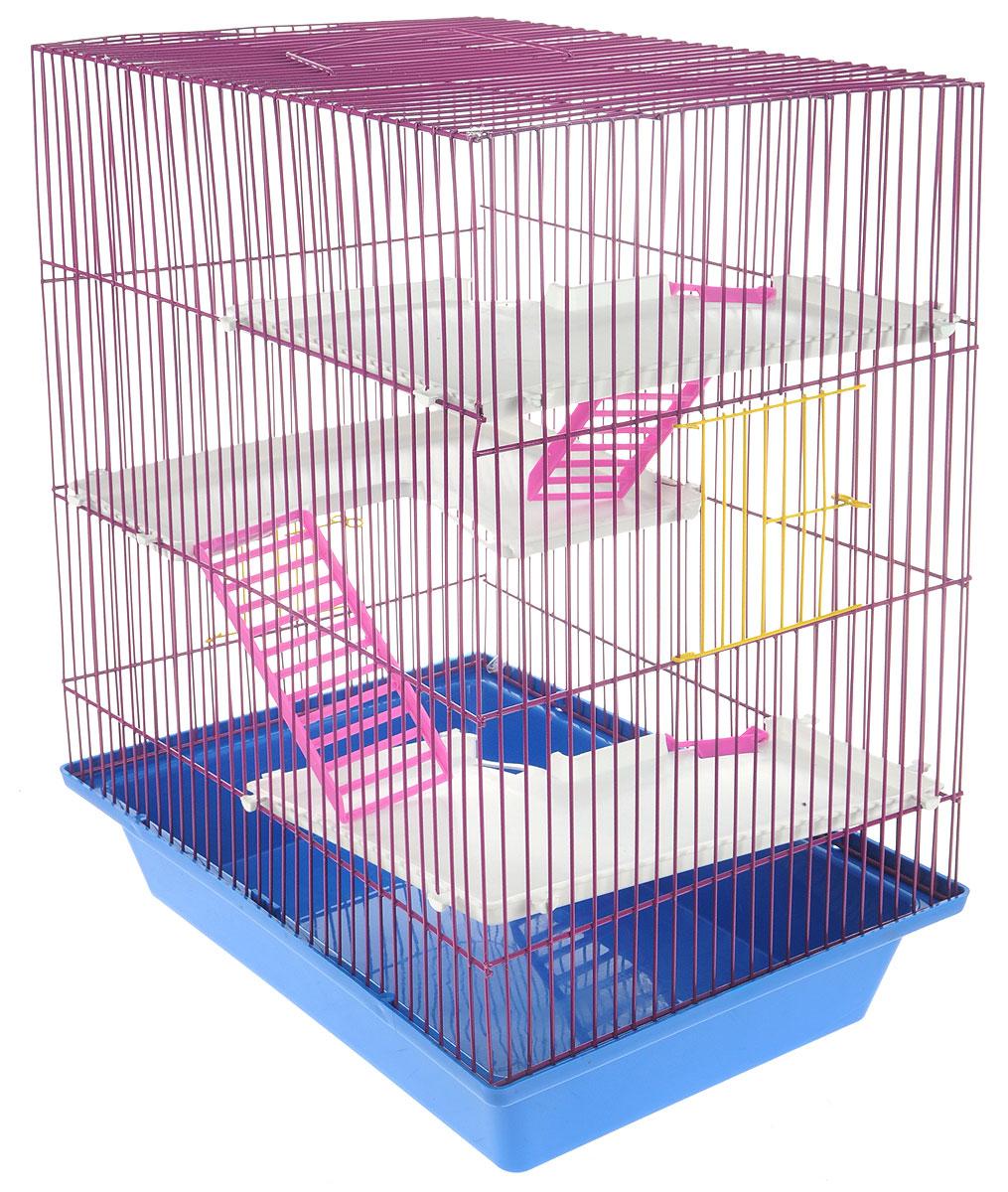 Клетка для грызунов ЗооМарк Гризли, 4-этажная, цвет: синий поддон, фиолетовая решетка, белые этажи, 41 х 30 х 50 см240_синий, фиолетовыйКлетка ЗооМарк Гризли, выполненная из полипропилена и металла, подходит для мелких грызунов. Изделие четырехэтажное. Клетка имеет яркий поддон, удобна в использовании и легко чистится. Сверху имеется ручка для переноски. Такая клетка станет уединенным личным пространством и уютным домиком для маленького грызуна.