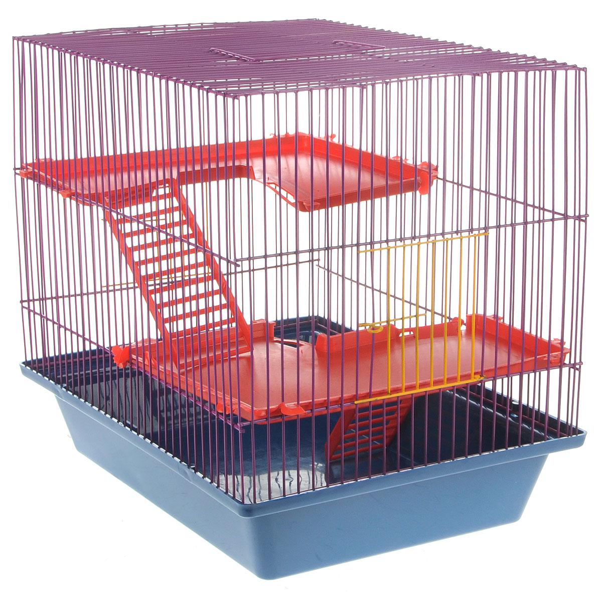 Клетка для грызунов ЗооМарк Гризли, 3-этажная, цвет: синий поддон, фиолетовая решетка, красные этажи, 41 х 30 х 36 см230СФКлетка ЗооМарк Гризли, выполненная из полипропилена и металла, подходит для мелких грызунов. Изделие трехэтажное. Клетка имеет яркий поддон, удобна в использовании и легко чистится. Сверху имеется ручка для переноски. Такая клетка станет уединенным личным пространством и уютным домиком для маленького грызуна.