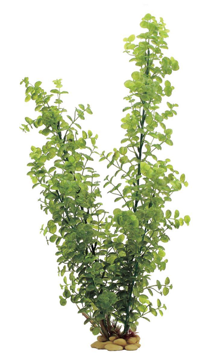 Растение для аквариума ArtUniq Бакопа, высота 60 смART-1110101Растение для аквариума ArtUniq Бакопа, высота 60 см