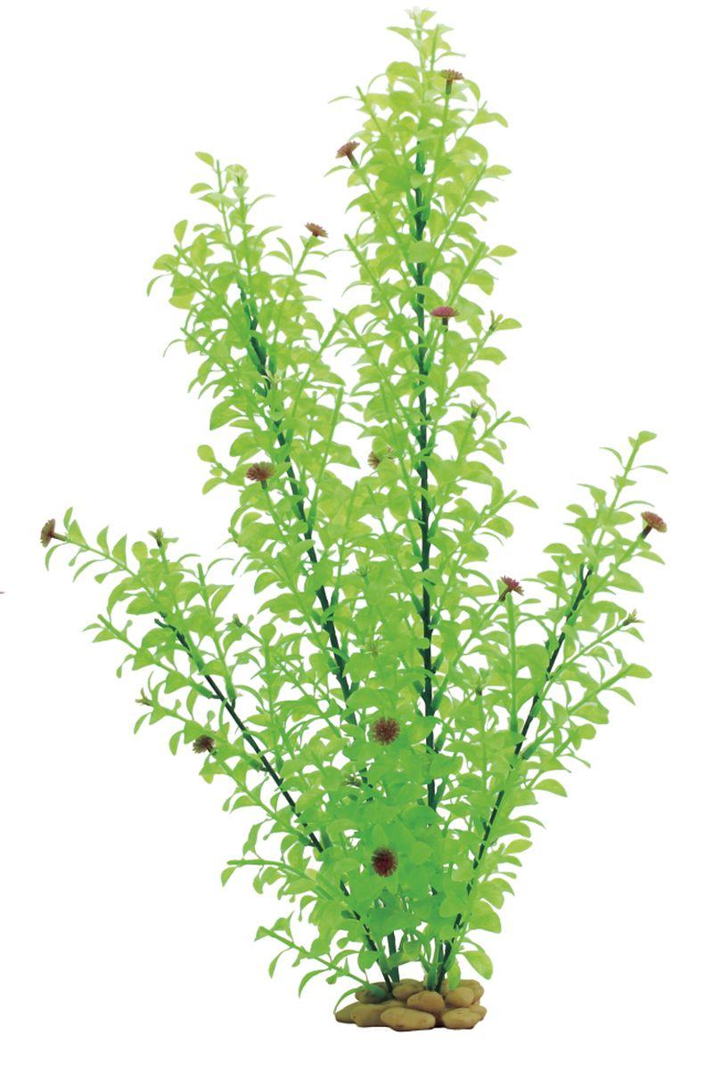 Растение для аквариума ArtUniq Гигрофила многосемянная, высота 60 смART-1110105Растение для аквариума ArtUniq Гигрофила многосемянная, высота 60 см
