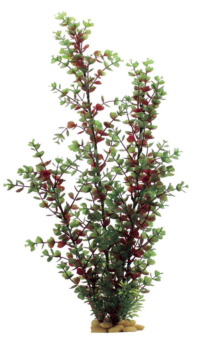Растение для аквариума ArtUniq Бакопа красно-зеленая, высота 60 смART-1110111Растение для аквариума ArtUniq Бакопа красно-зеленая, высота 60 см