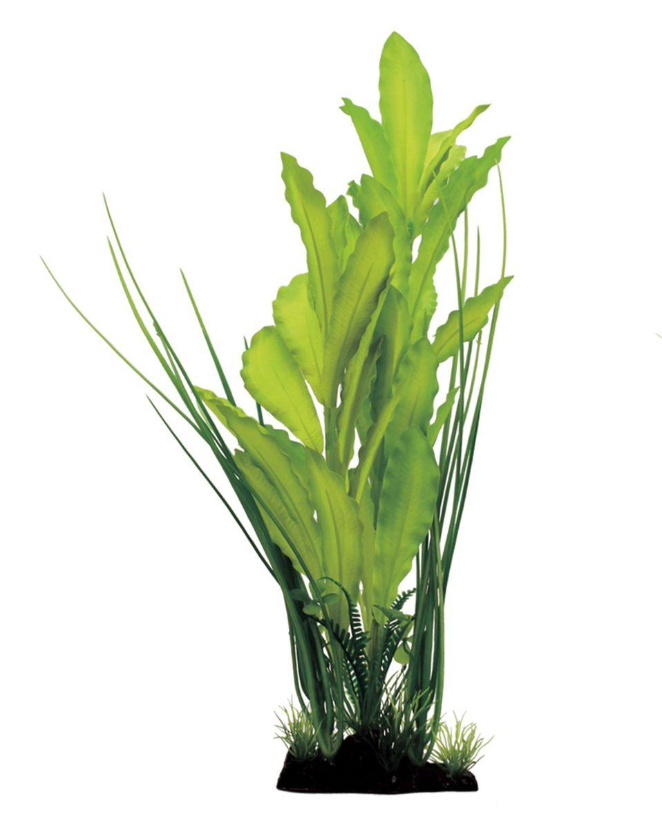 Растение для аквариума ArtUniq Эхинодорус зеленый, шелковое, высота 40 смART-1110320Растение для аквариума ArtUniq Эхинодорус зеленый, шелковое, высота 40 см