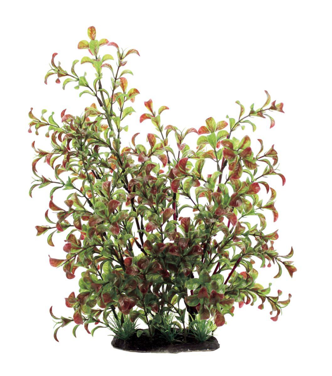 Растение для аквариума ArtUniq Людвигия красно-зеленая, высота 35 смART-1130101Растение для аквариума ArtUniq Людвигия красно-зеленая, высота 35 см