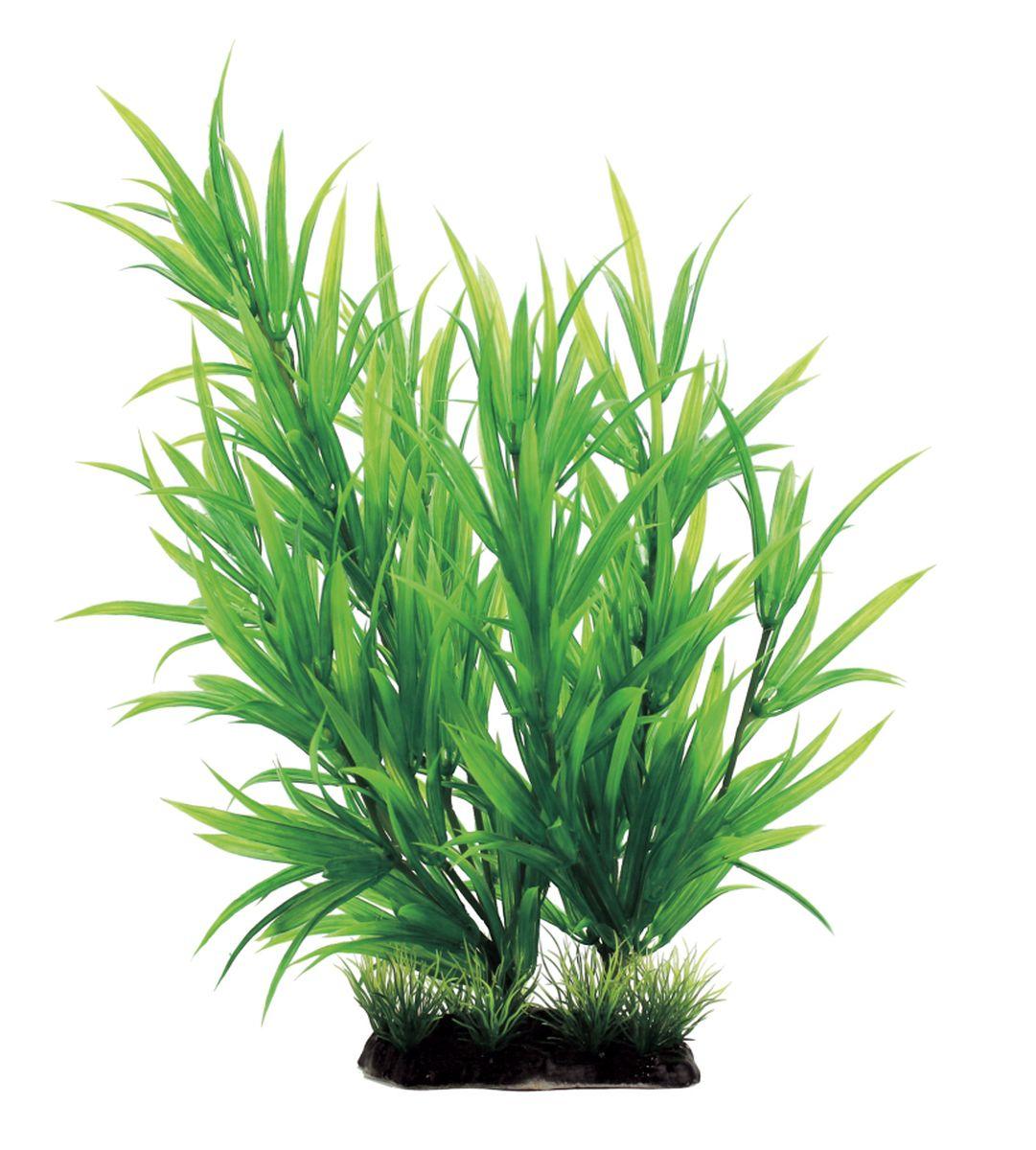 Растение для аквариума ArtUniq Гетерантера, высота 35 смART-1130102Растение для аквариума ArtUniq Гетерантера, высота 35 см